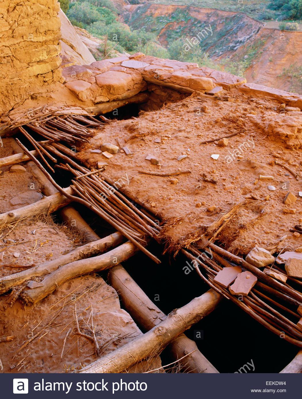 Tetto originale dettaglio di fango e salici, antica dimora Anasazi. Navajo National Monument, Arizona. Immagini Stock