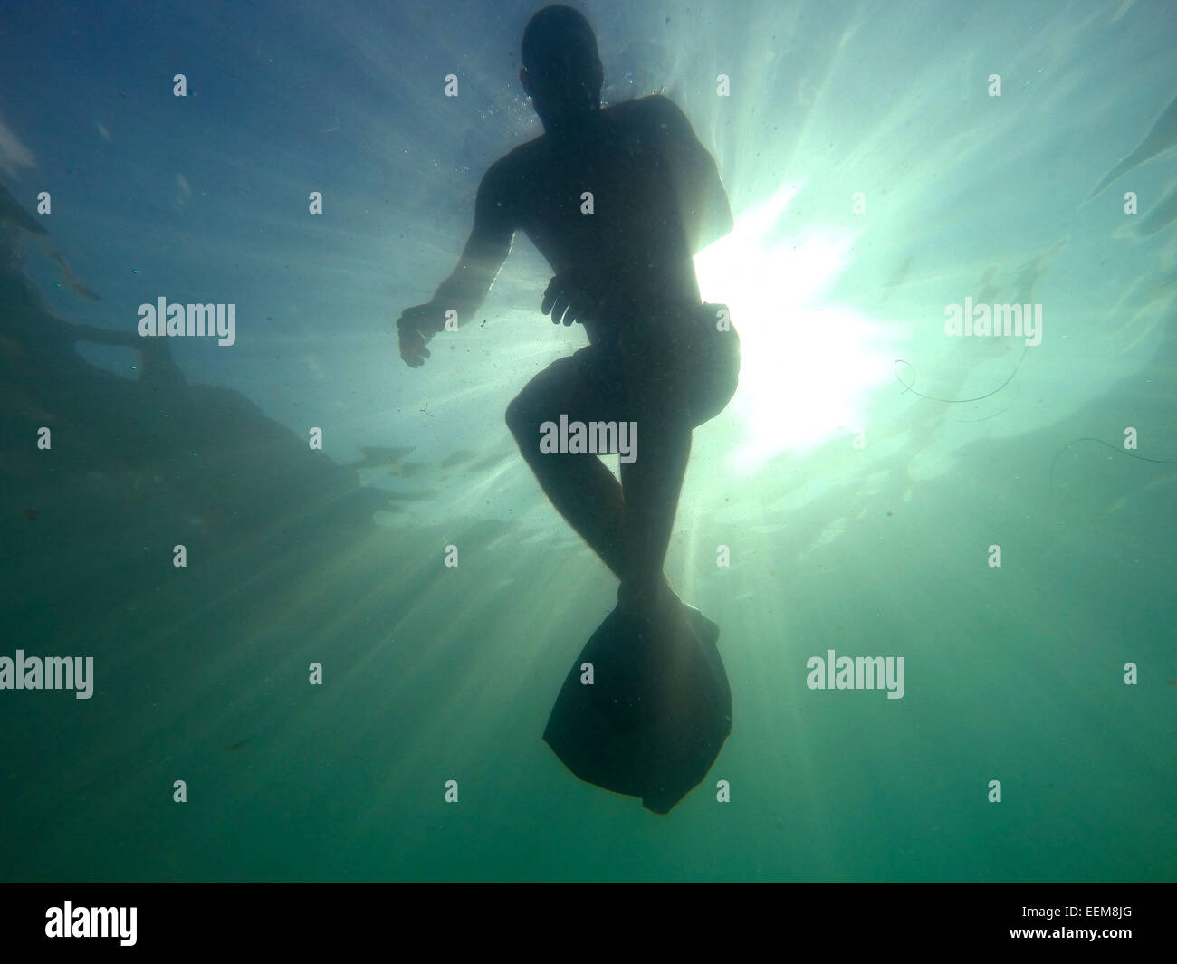 Nuotare nell'oceano Immagini Stock