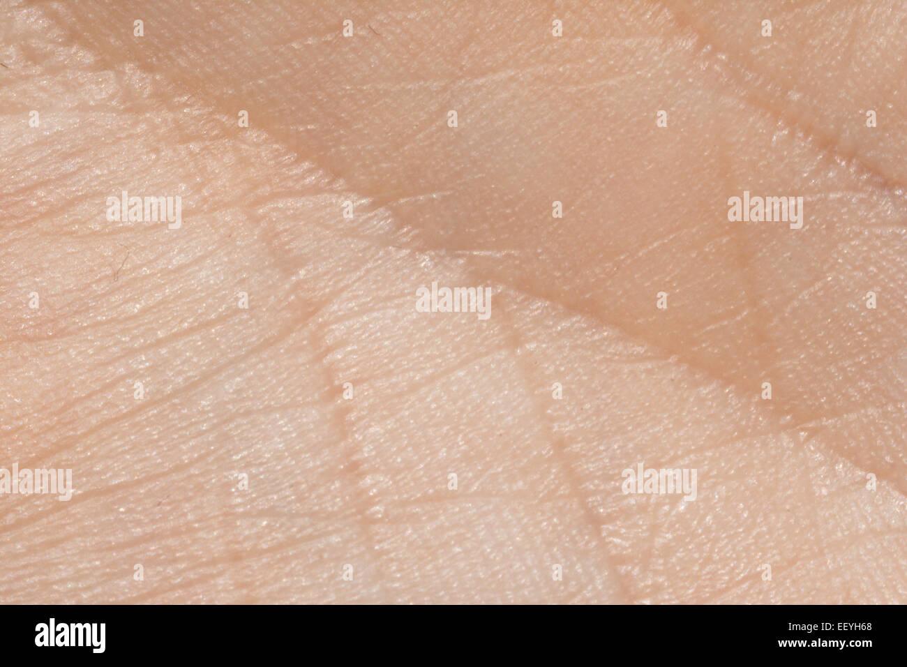La pelle umana texture closeup dettaglio Immagini Stock