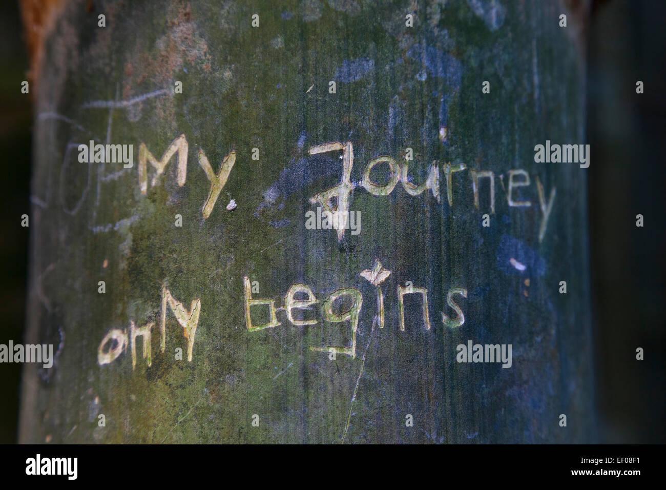 Il mio viaggio inizia solo scritto in un albero, Australia Immagini Stock