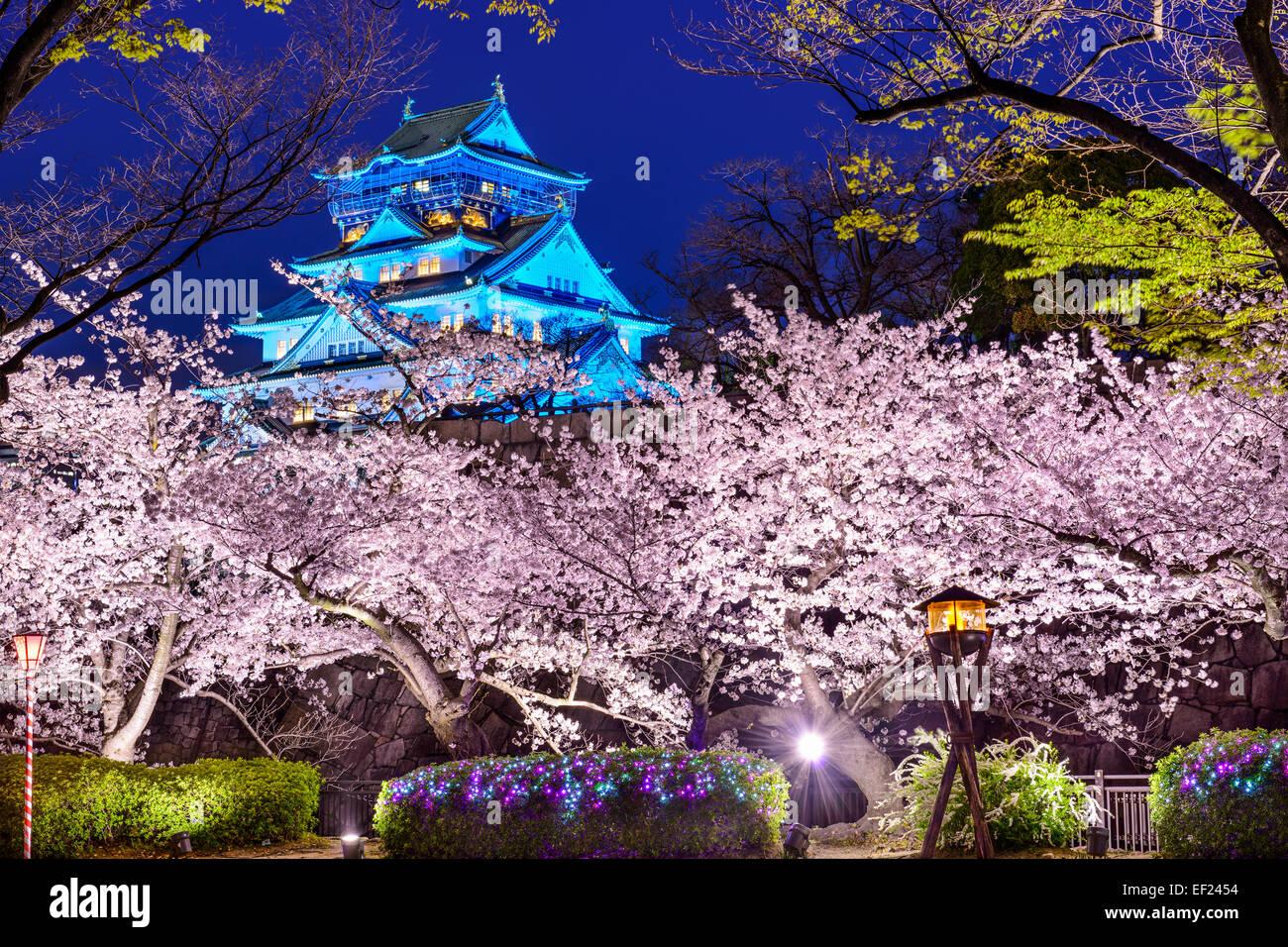 Osaka in Giappone presso il Castello di Osaka durante la stagione primaverile. Immagini Stock