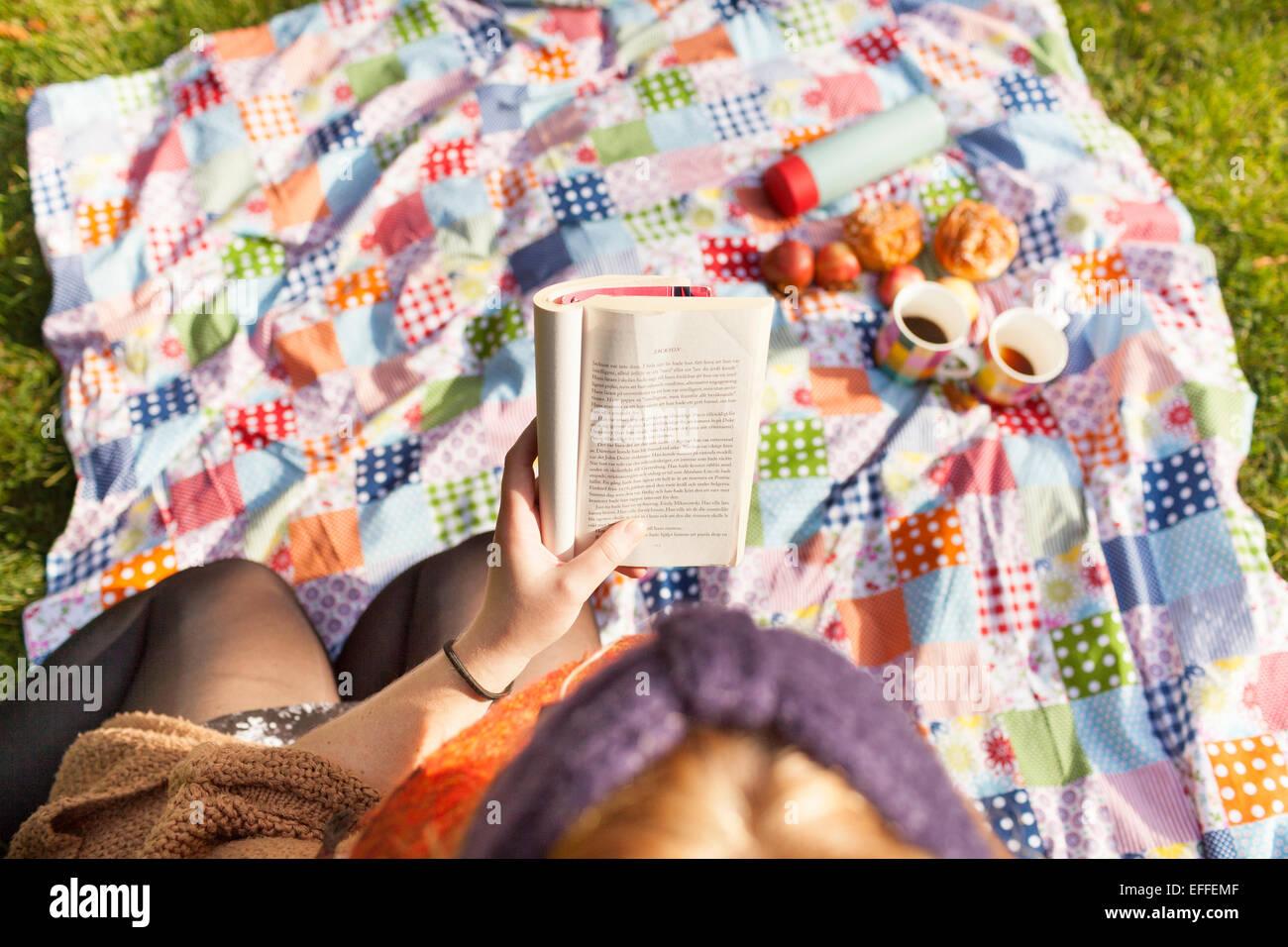 Angolo di Alta Vista della giovane donna leggendo un libro sul Coperta picnic Immagini Stock