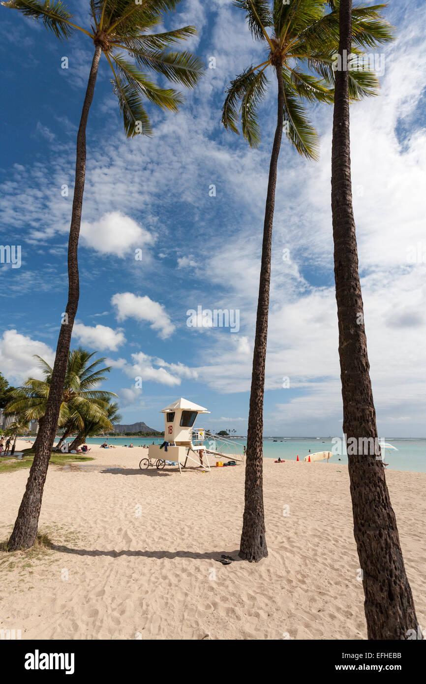 Bagnino di salvataggio sulla stazione di Ala Moana Beach Honolulu. Sabbia bianca, un cielo blu e agitando le palme Immagini Stock