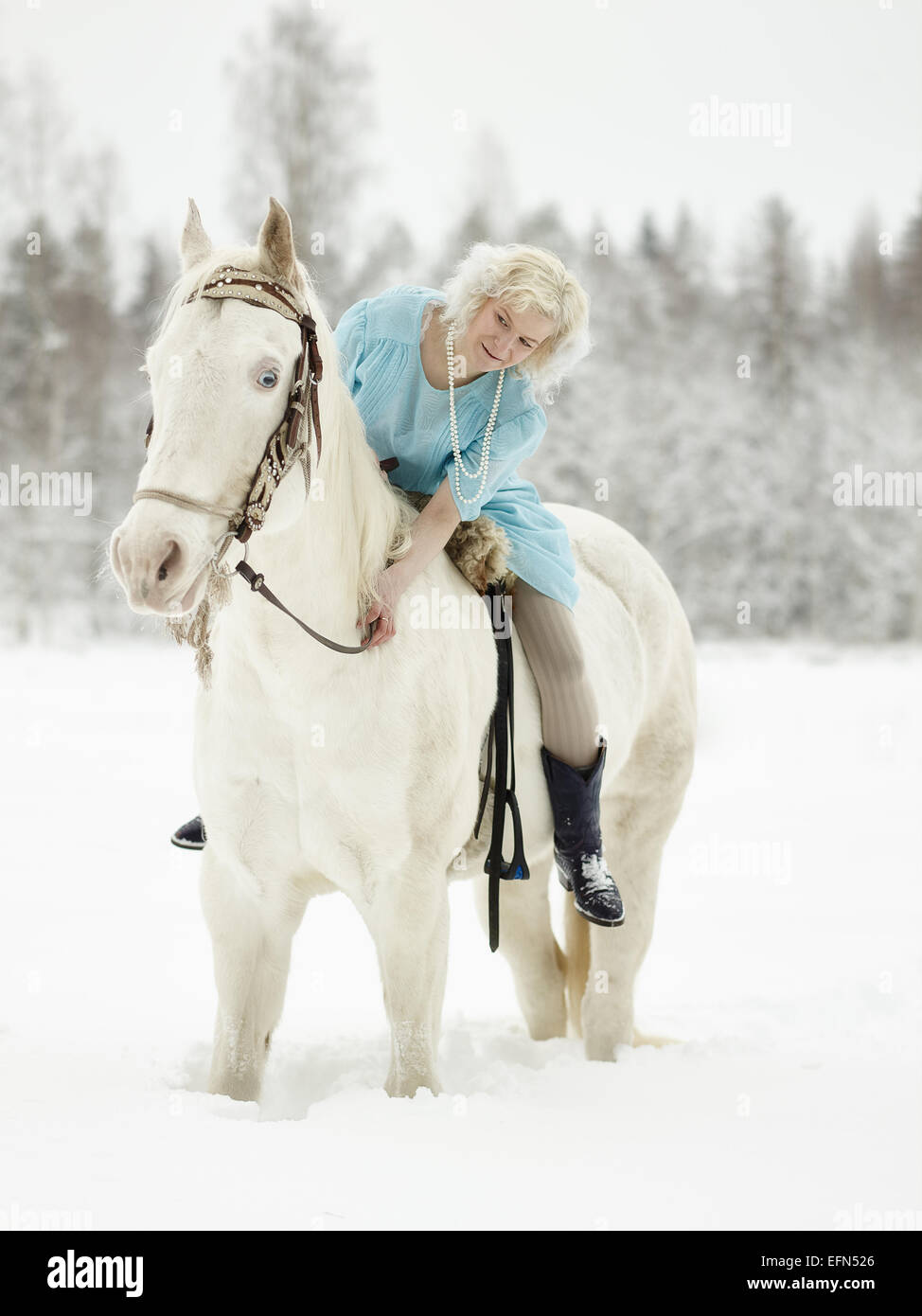 Donna attraente indossando abiti blu e lei in sella ad un cavallo bianco Immagini Stock
