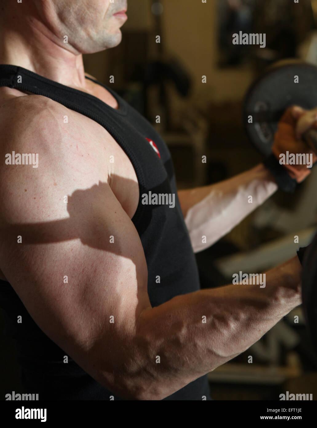 Bodybuilding allenamento in palestra. Maschio di sollevamento di pesi liberi. formazione con barbell per costruire Immagini Stock