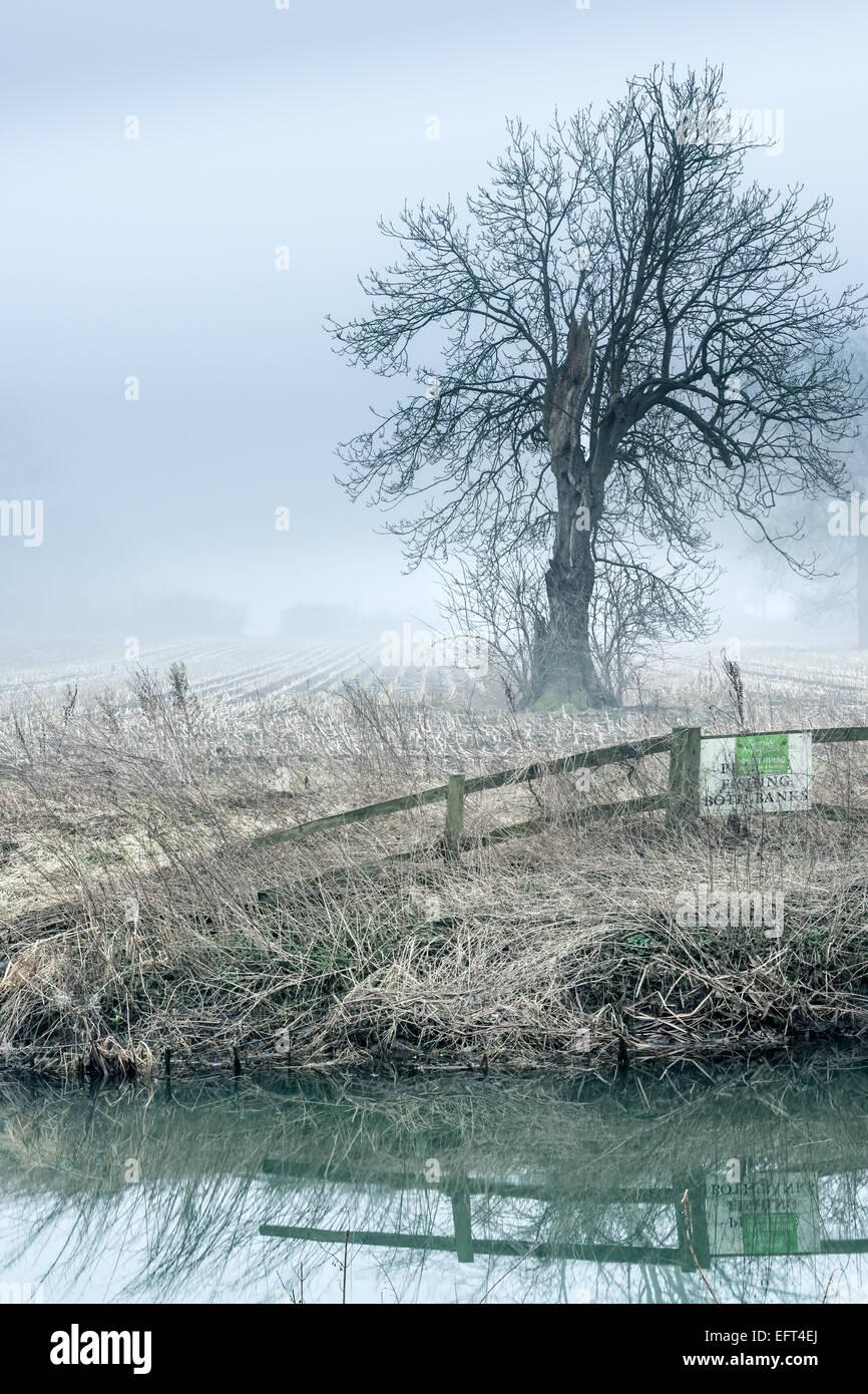 Un Misty River Avon Immagini Stock
