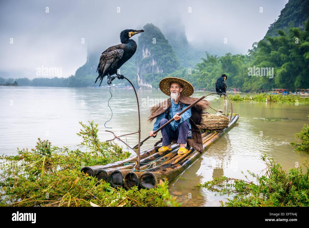 Cormorano pescatore e il suo uccello sul fiume Li in Yangshuo, Guangxi, Cina. Immagini Stock