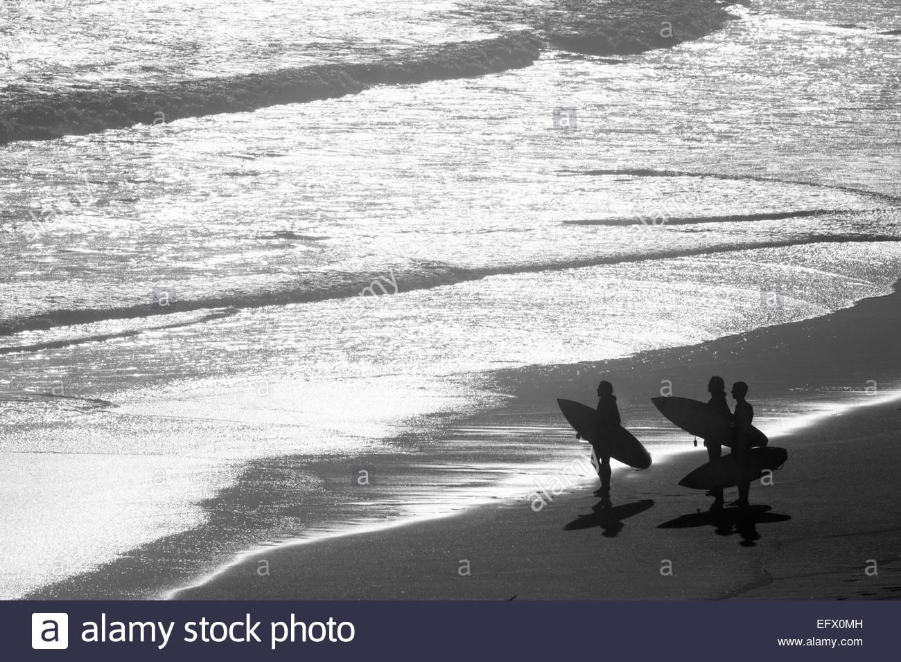 Gruppo di Surfers che trasportano tavole da surf che guarda al mare Immagini Stock