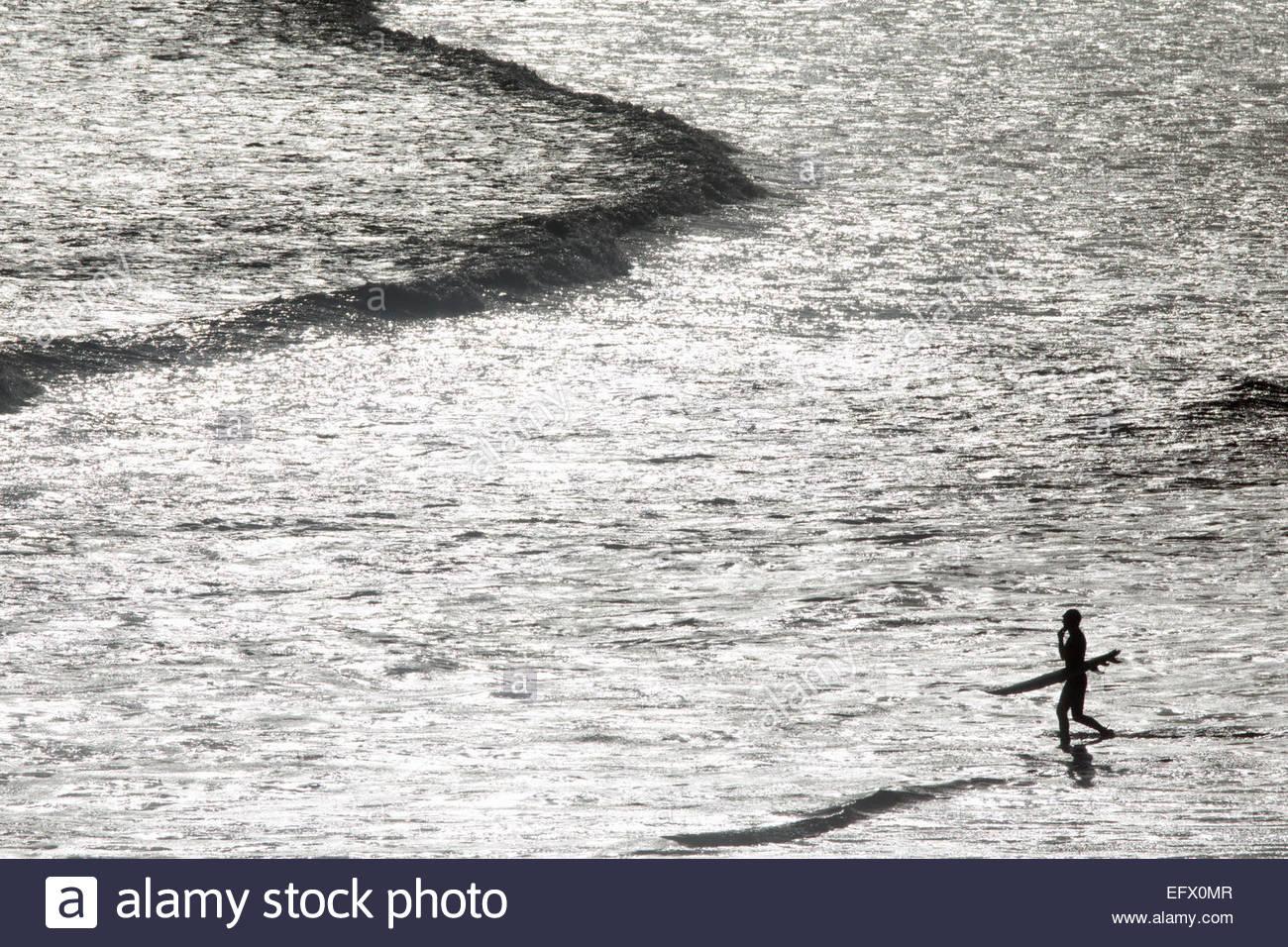 Surfer portante della tavola da surf, trampolieri fuori in mare Immagini Stock