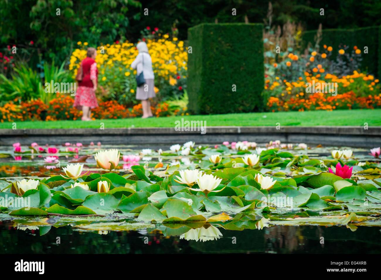 Cerca Fiori.Per I Visitatori In Cerca Di Fiori Nel Giardino Con Laghetto Di