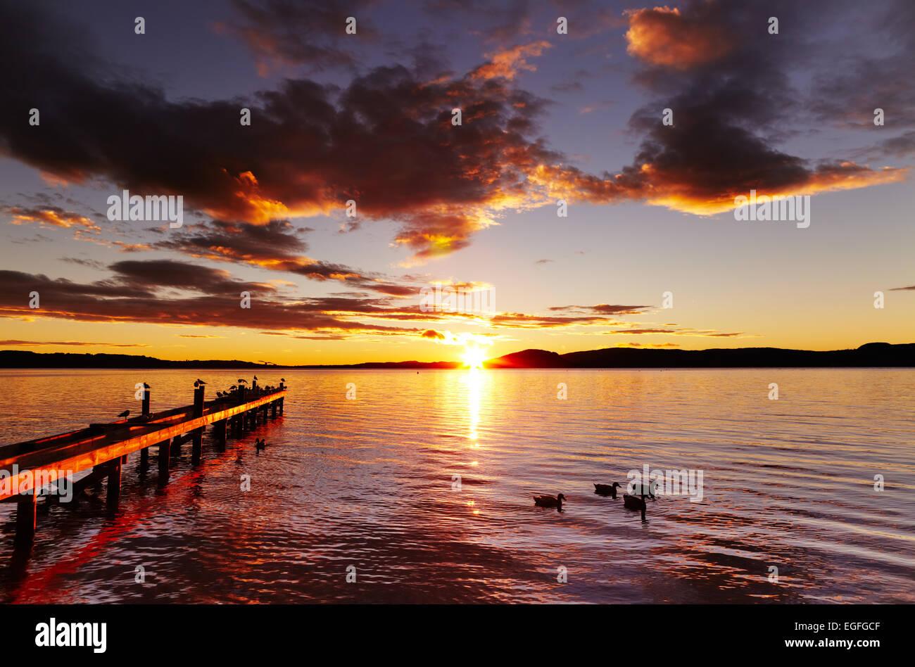 Il lago di Rotorua a sunrise, Isola del nord, Nuova Zelanda Immagini Stock
