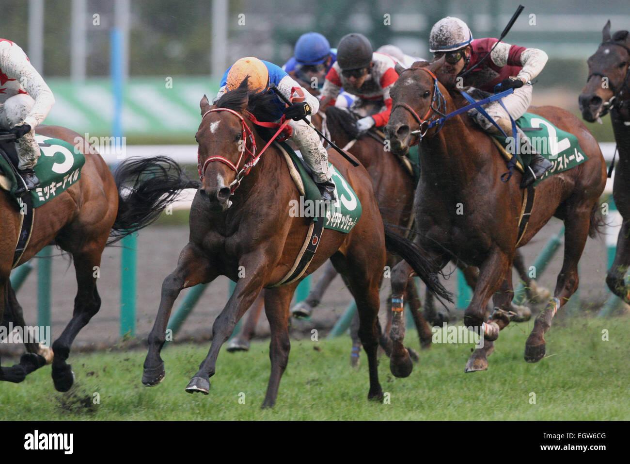 Hyogo, Giappone. 1 Mar, 2015. (L-R) Daiwa Maggiore ( Mirco Demuro), un temporale improvviso (Yusaku Kokubun) Horse Immagini Stock