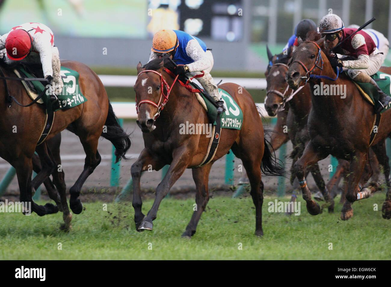 Hyogo, Giappone. 1 Mar, 2015. (C-R) Daiwa Maggiore ( Mirco Demuro), un temporale improvviso (Yusaku Kokubun) Horse Immagini Stock