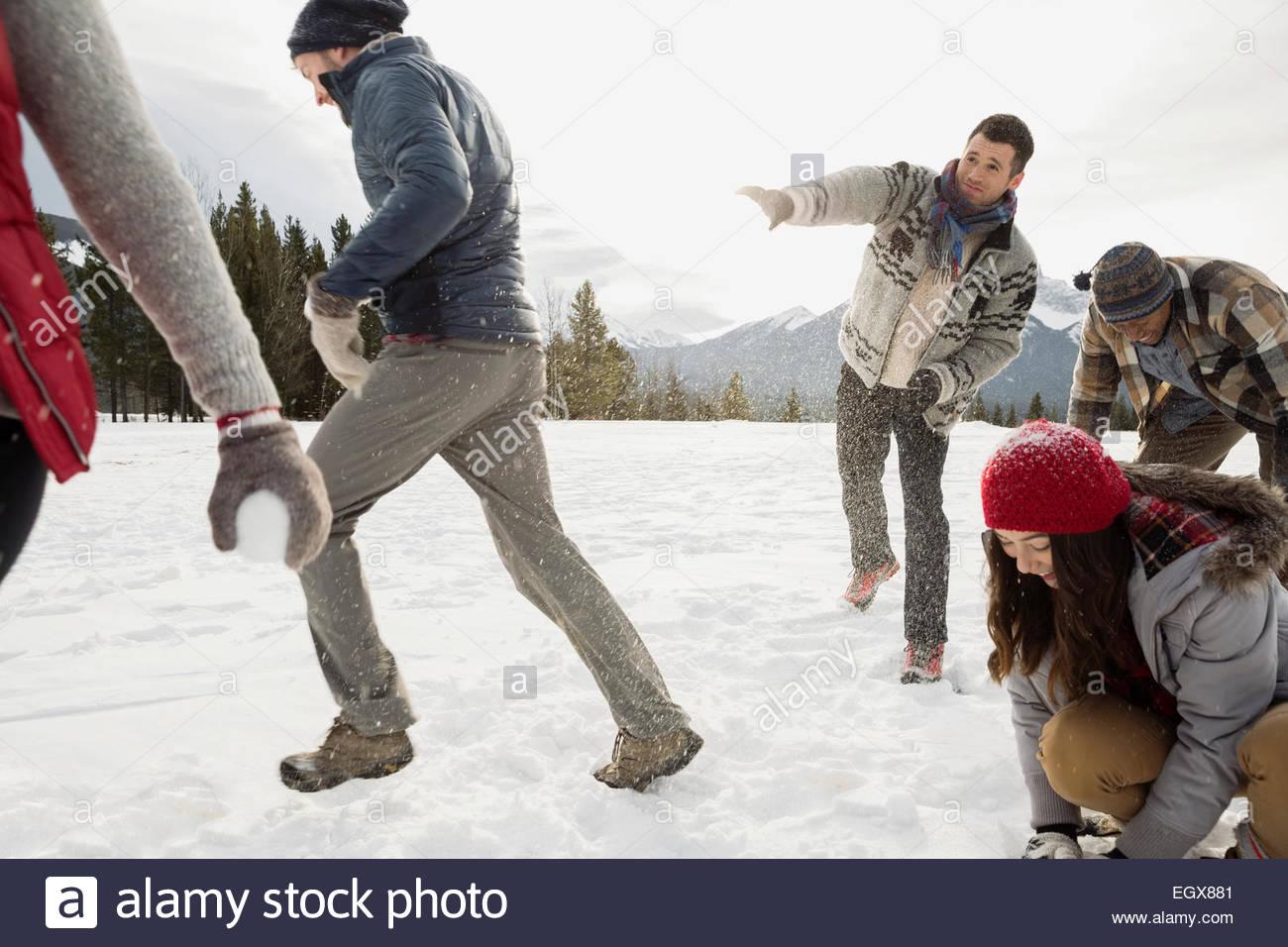Amici godendo lotta con le palle di neve nel campo Immagini Stock