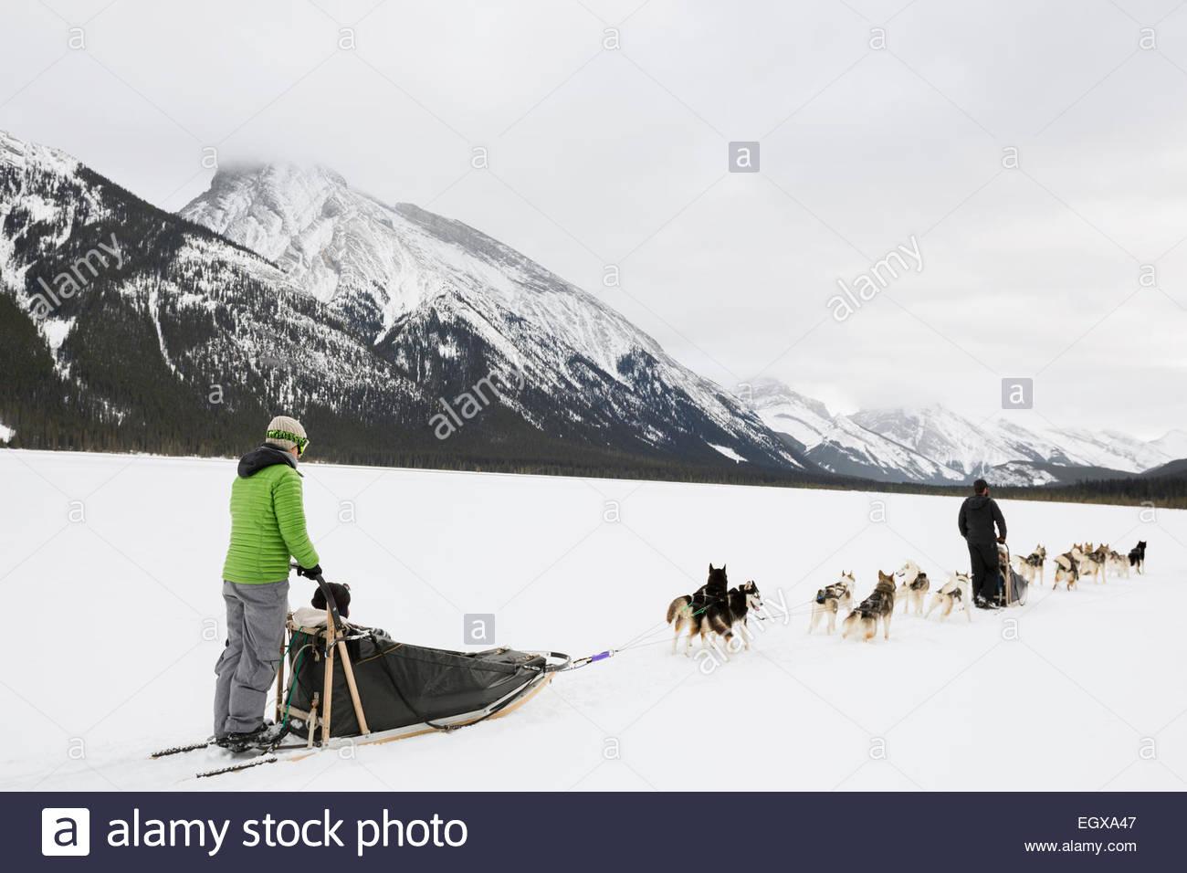 Persone dogsledding nel campo nevoso al di sotto delle montagne Immagini Stock