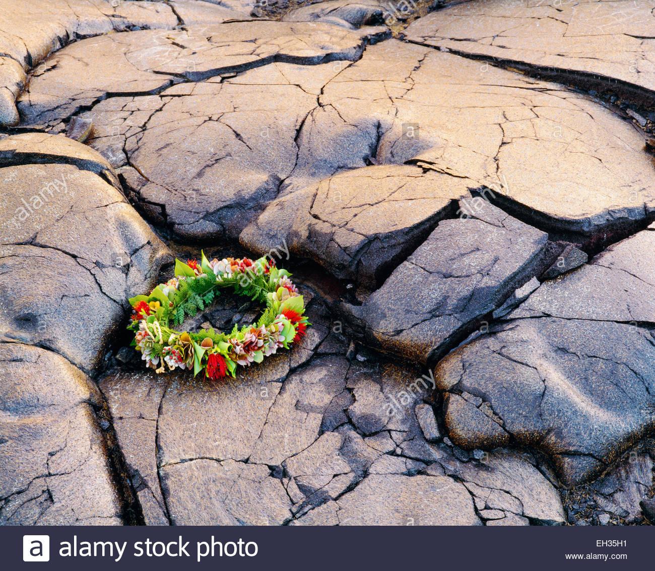 ~ 0801-1064 Copyright: George H.H. Huey ~ un sacro lei fatta con sette piante native. Parco Nazionale dei Vulcani Immagini Stock