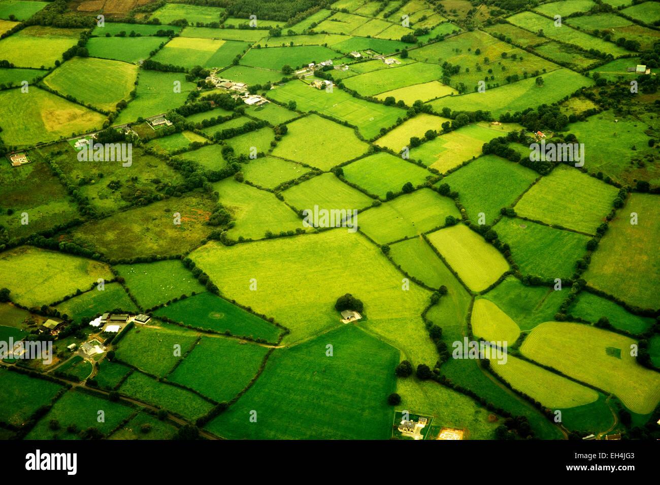Pascoli verdi come si vede dall'aria. L'Irlanda Immagini Stock
