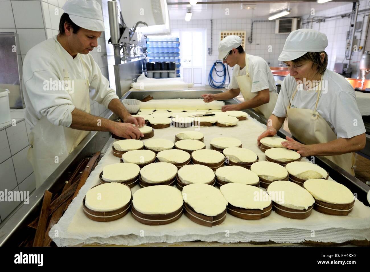 Francia, Doubs, Saint Point Lac, Michelin caseificio, formaggio Mont d o, dopo la scomposizione e il taglio della Immagini Stock
