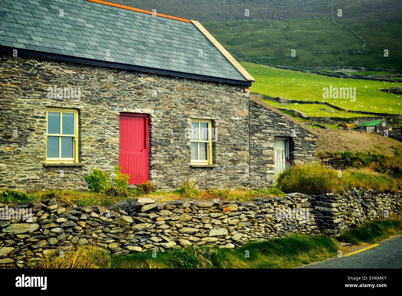 Casa di pietra e pecore in pascolo con recinti di pietra sulla testa Slea Drive. Penisola di Dingle, Irlanda. Immagini Stock