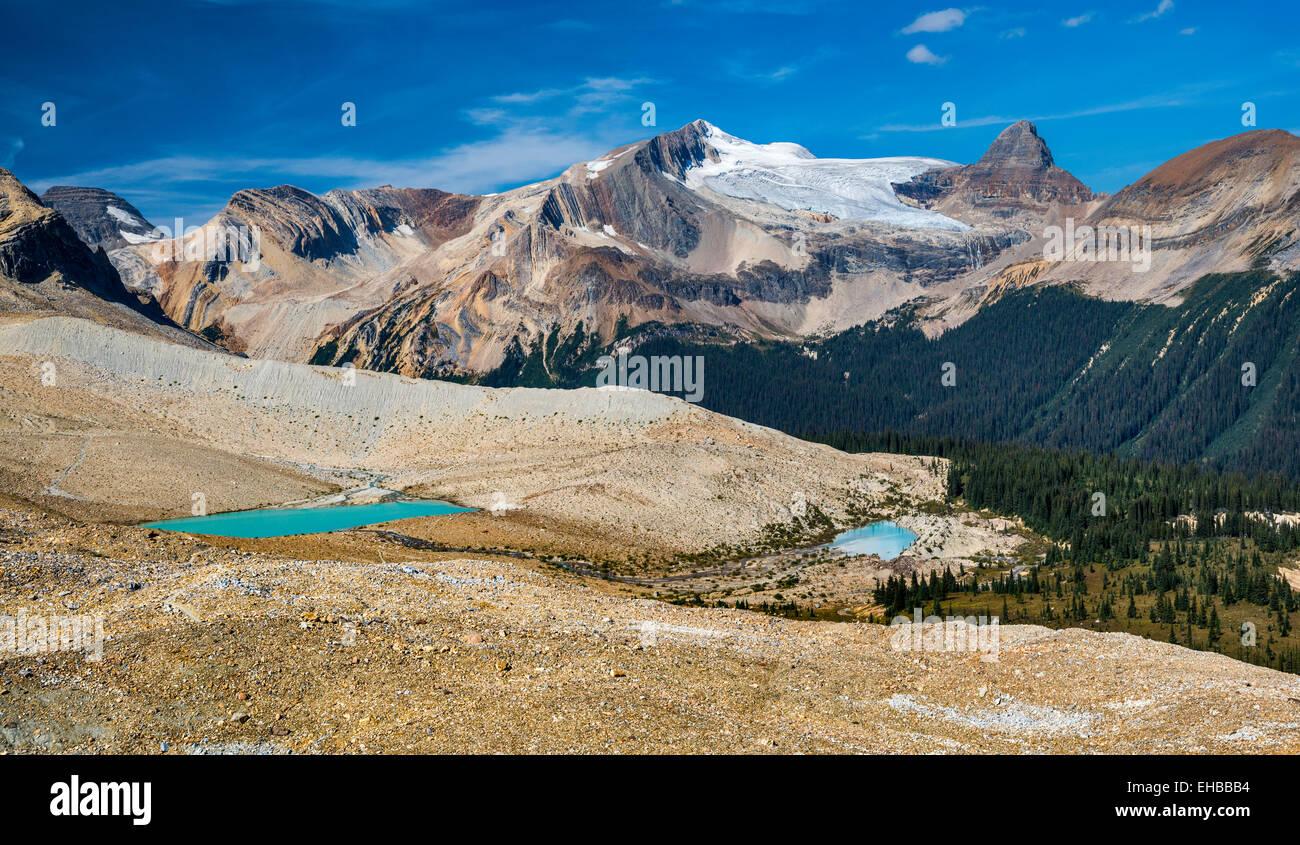 Glacier des Poilus, picco isolato, Whaleback Mountain, da Iceline Trail, Canadian Rockies, Yoho Parco Nat, British Immagini Stock