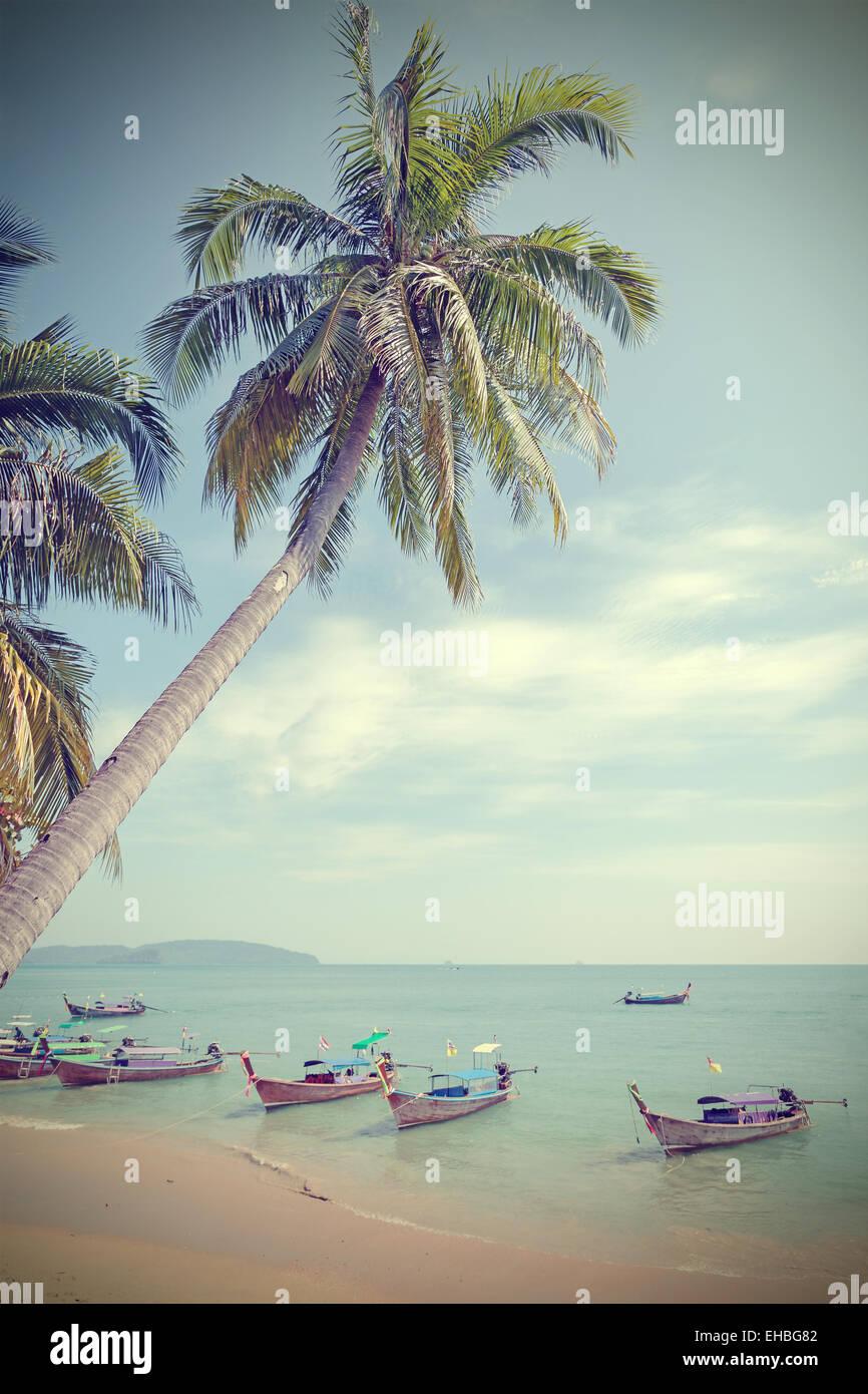 Vintage tonica palme sulla spiaggia, estate sfondo. Immagini Stock