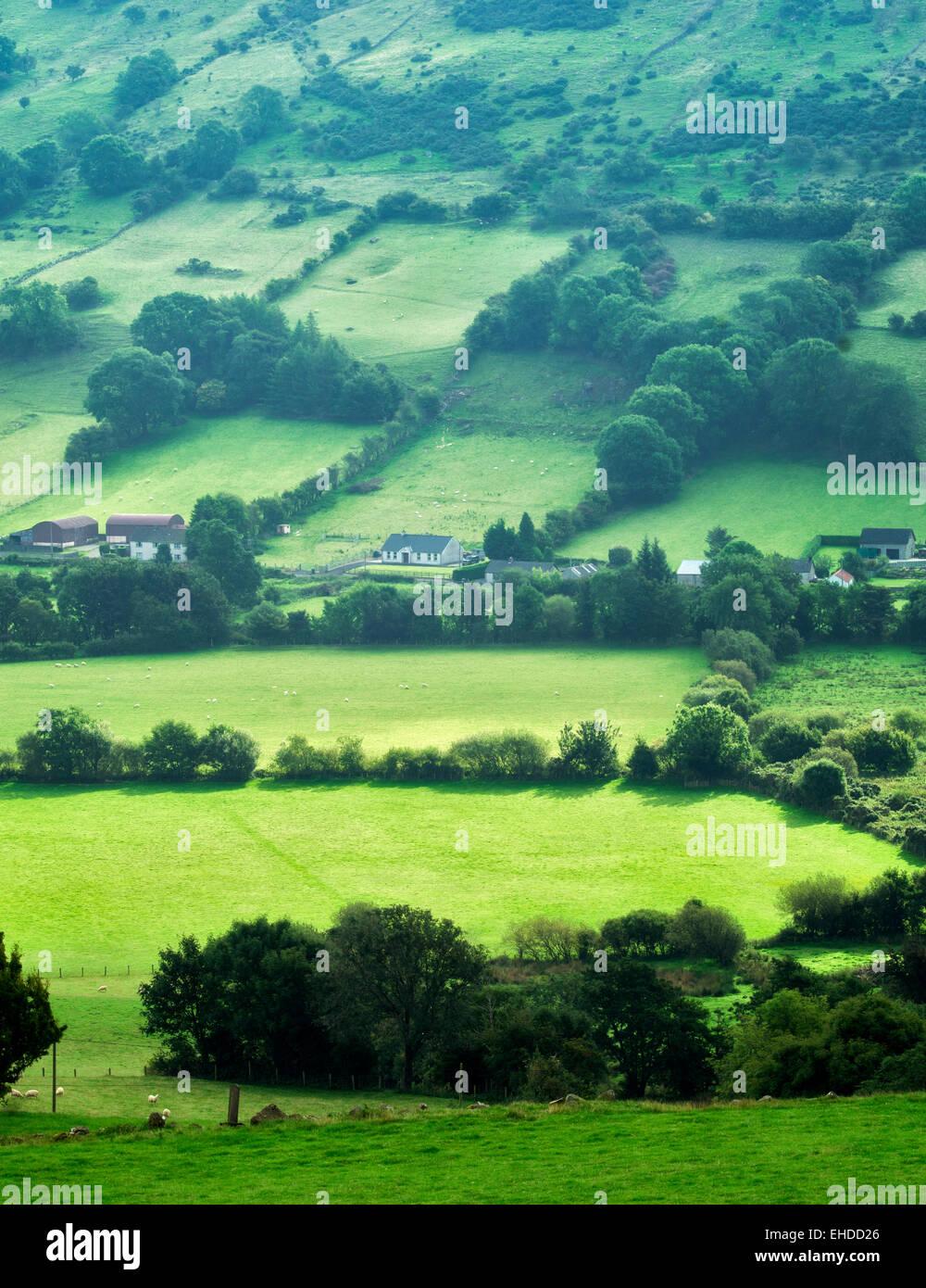 Glenariff Vallata da Glenariff Forest Park, Irlanda del Nord Immagini Stock