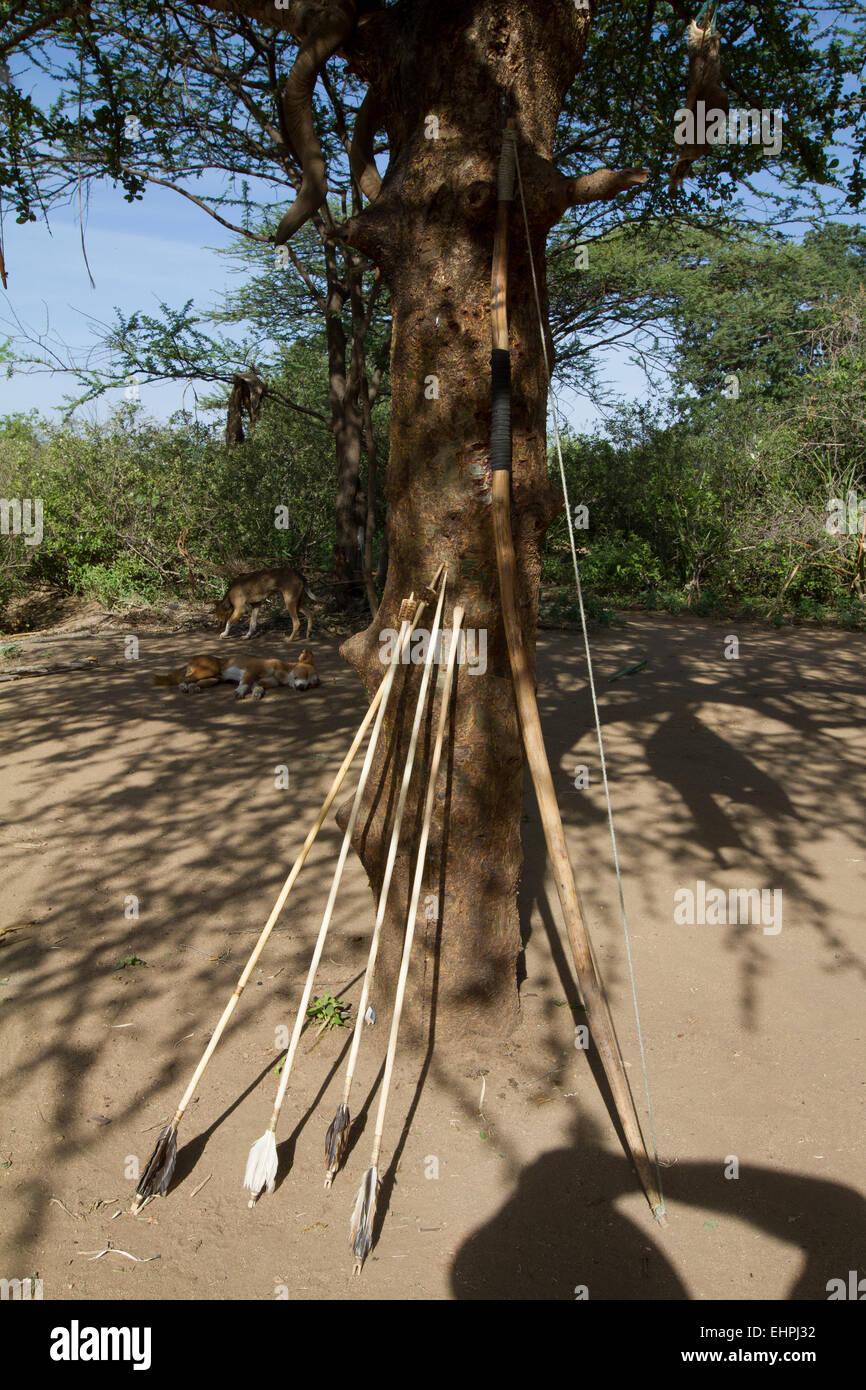 Arco e frecce, appartenente ad un Hazabe tribesman, su degli ultimi cacciatori-raccoglitori in tutto il mondo. Immagini Stock