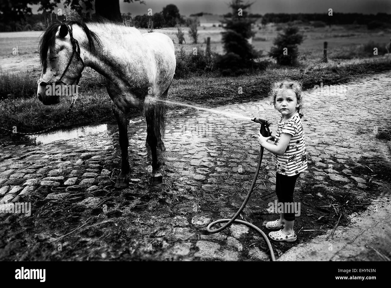 Lavaggio ragazza il suo cavallo Immagini Stock
