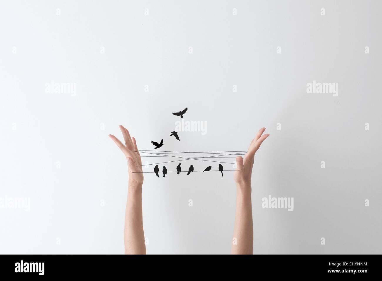 Stringa di gioco a mano con gli uccelli appollaiato sulla stringa Immagini Stock