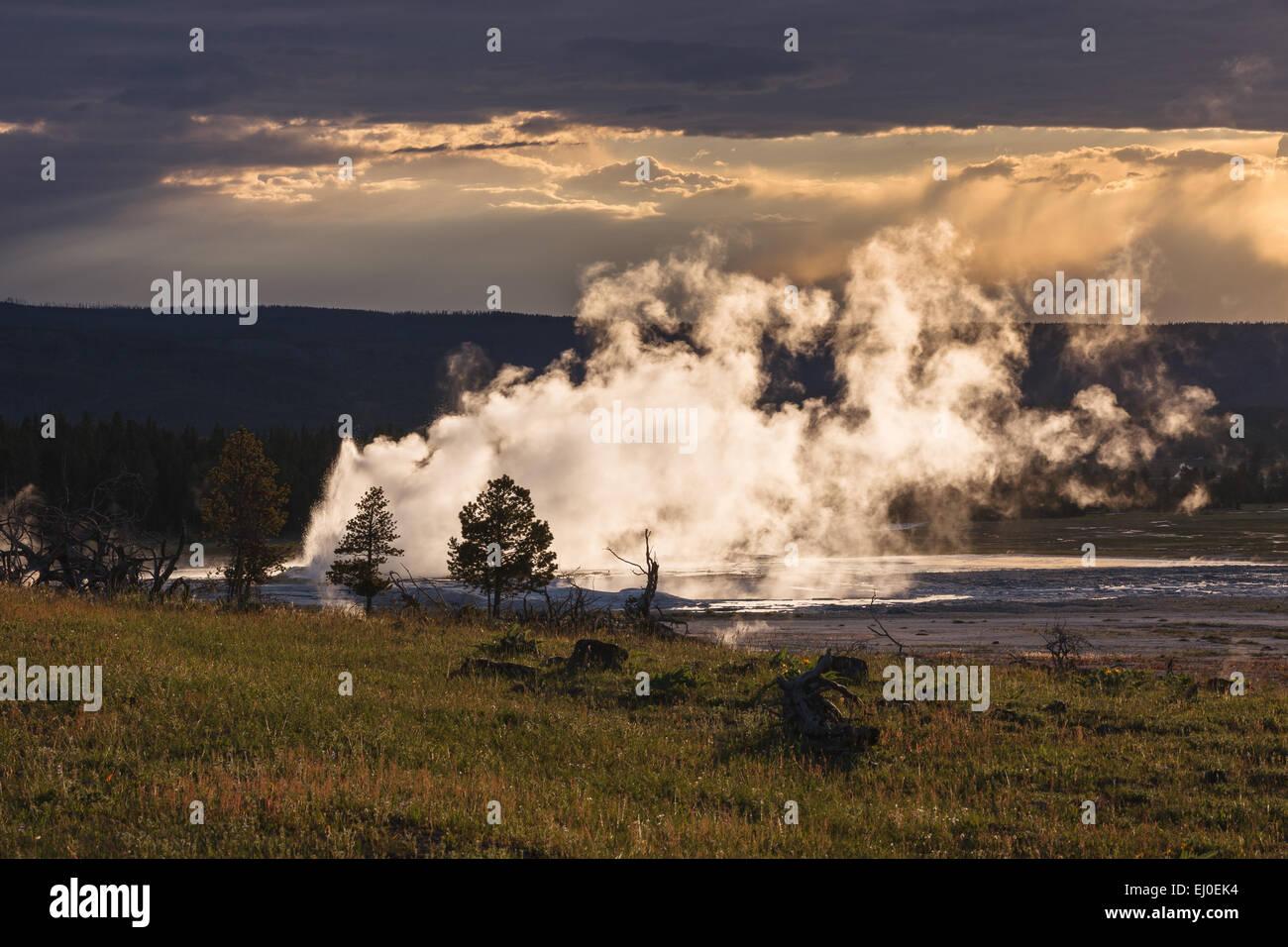 Geyser nel Parco Nazionale di Yellowstone al tramonto. Il Wyoming, Stati Uniti d'America. Immagini Stock