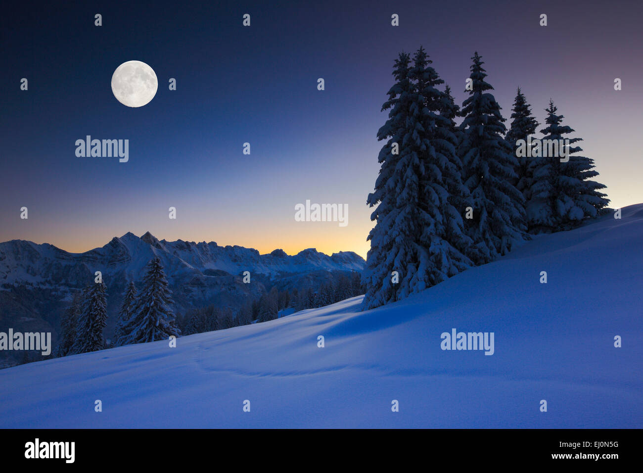 Alpi, Alvier, Alviergruppe, Alvier gamma, visualizzare, albero, montagna, panorama di montagna, montagne, massiccio, Immagini Stock