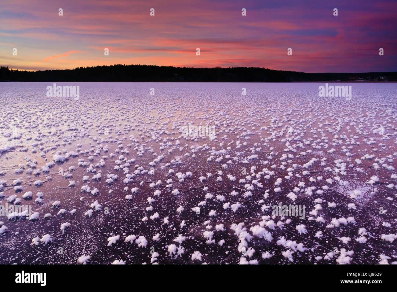 Rose di brina sul ghiaccio e cielo colorato al tramonto nel lago Vansjø, Østfold fylke, Norvegia. Immagini Stock