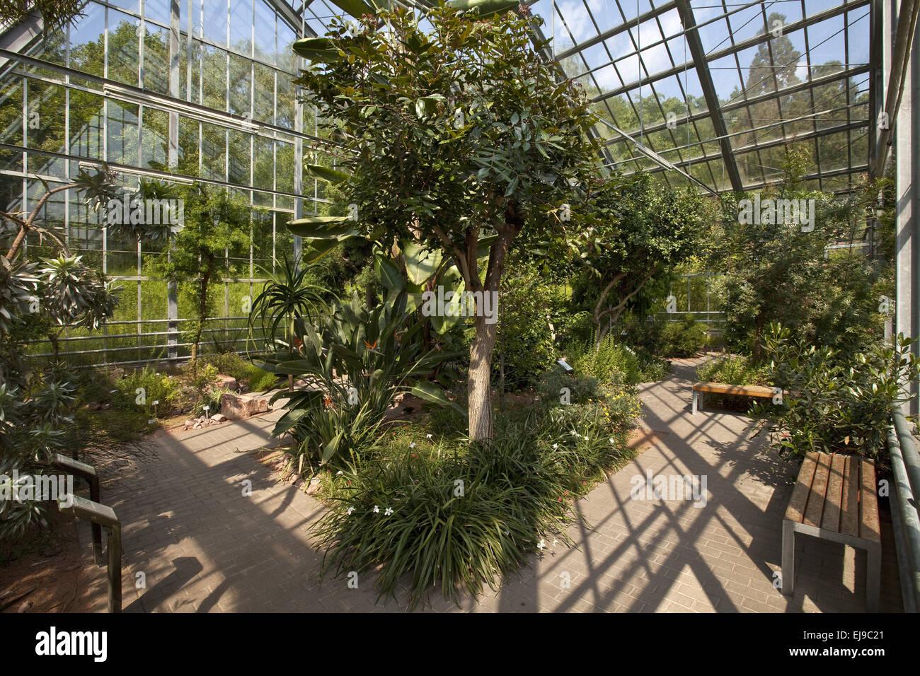 Giardino Botanico, Bochum, Germania Immagini Stock