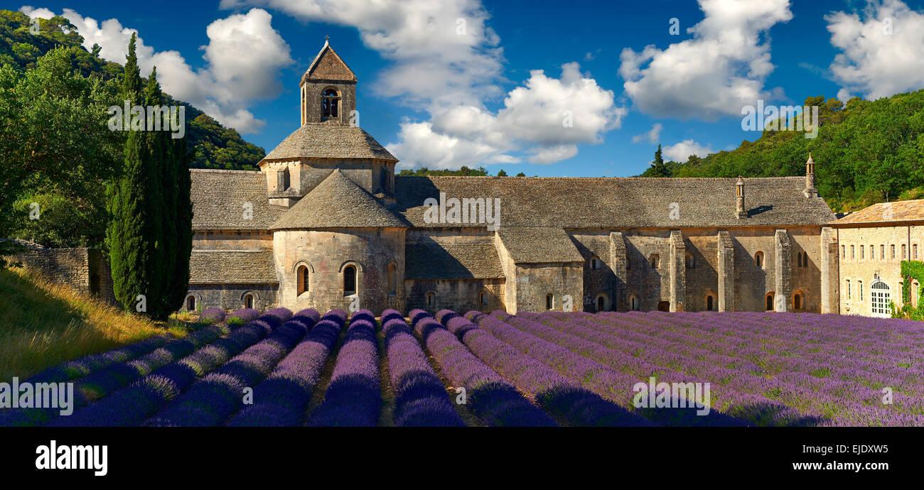 La romanica del XII secolo Abbazia Cistercense di Notre Dame di Senanque, in fioritura di campi di lavanda della Immagini Stock