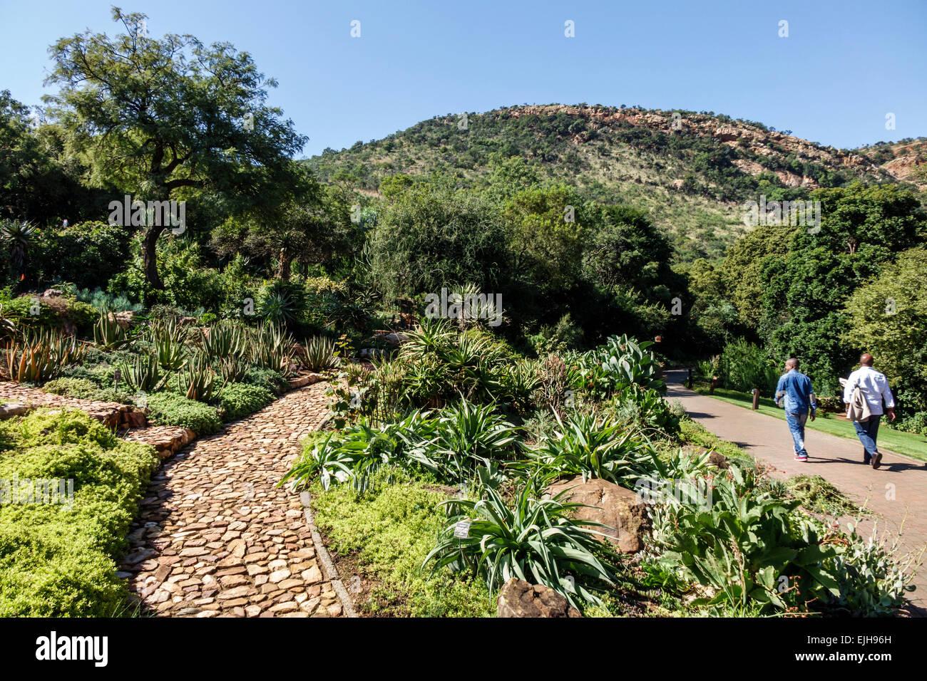 Johannesburg Sudafrica African Roodepoort Walter Sisulu Giardino Botanico nazionale geologico Witwatersrand man Immagini Stock