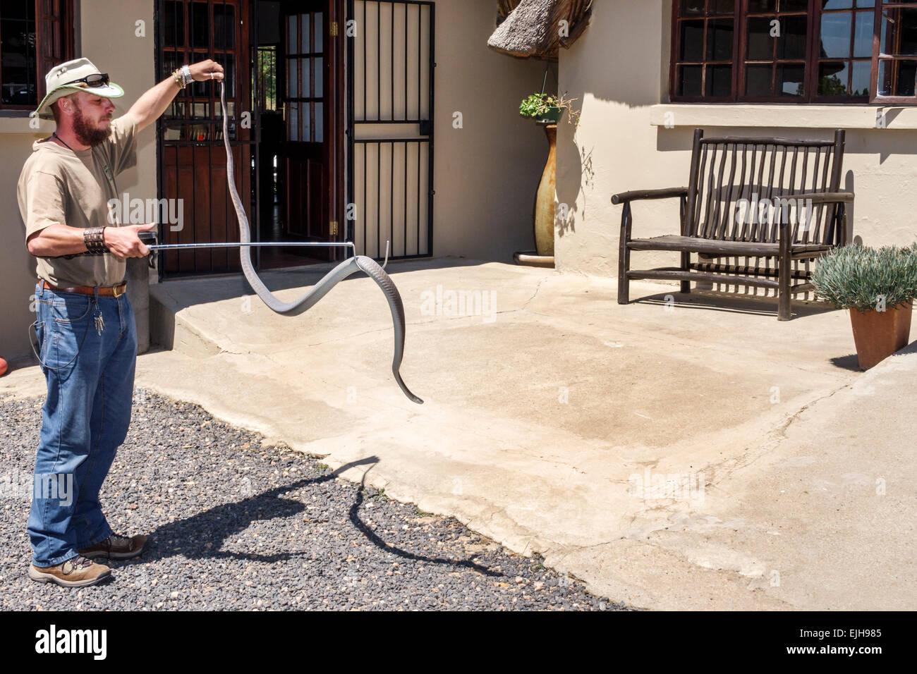Johannesburg Sudafrica African Croc City Crocodile & e del rettile Park farm uomo guarda dipendente animale Immagini Stock