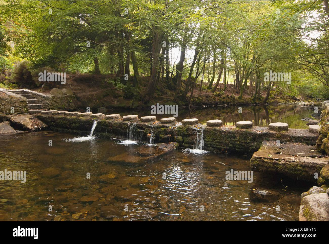 Uno di 16 ponti attraverso il Fiume Shimna in Tollymore Forest Park, Irlanda del Nord Foto Stock