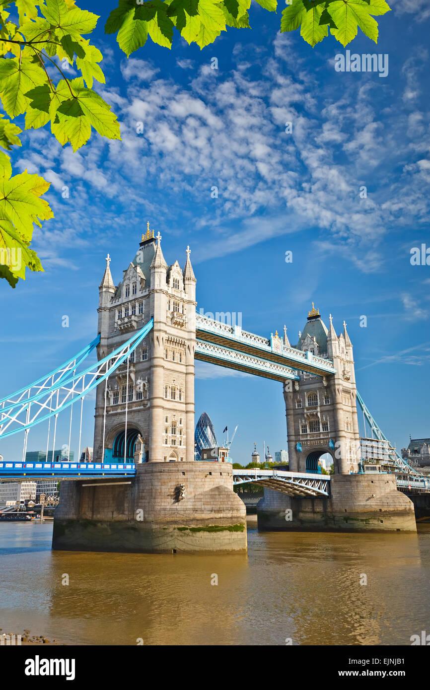 Il Tower Bridge di Londra Immagini Stock