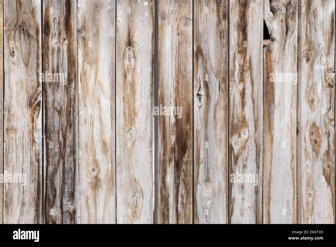 Assi Di Legno In Inglese : Vintage asse di legno texture di sfondo il vecchio grunge di
