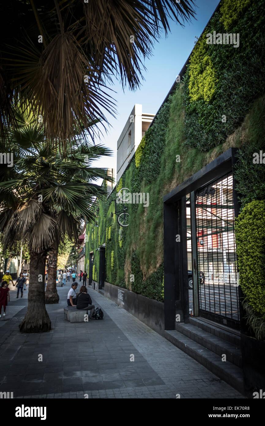 Architettura contemporanea edificio con un giardino verticale del centro storico di Città del Messico Immagini Stock