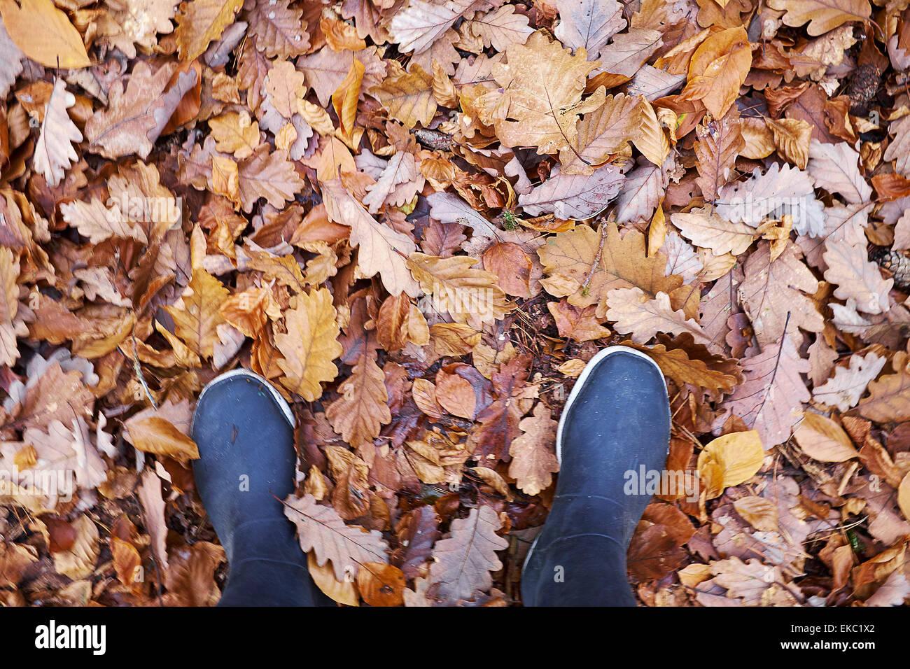 Elevato angolo di visione della donna in stivali di gomma la cordatura in foglie di autunno Immagini Stock