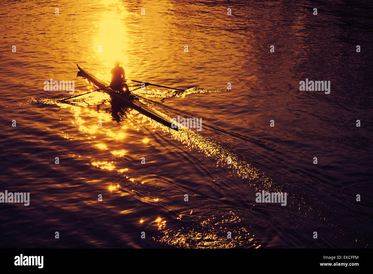 Vogatore al tramonto Immagini Stock