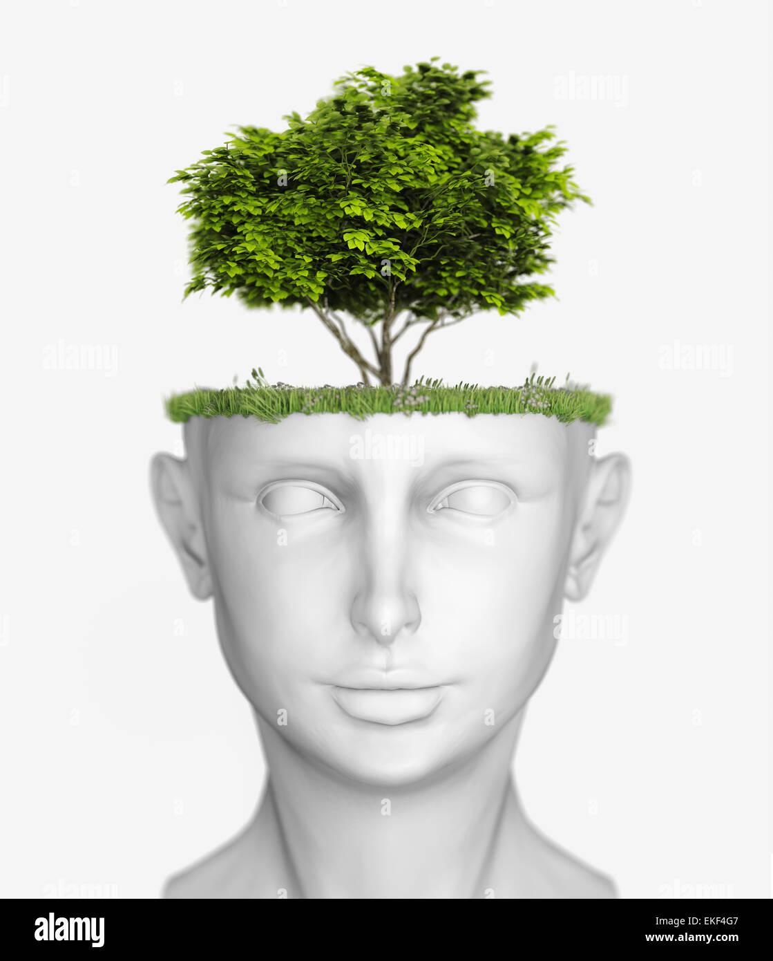 testa con l'albero Immagini Stock