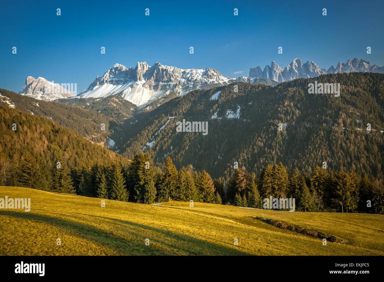 Dolomiti (Dolomiti) Alpi visto dal Passo delle Erbe, in Alto Adige, Trentino Alto Adige, Norther Italia Immagini Stock