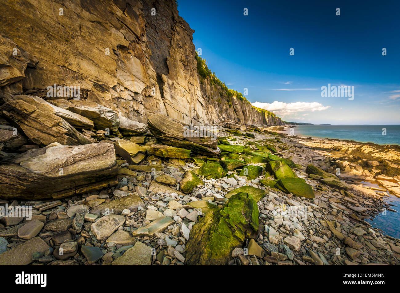 Cape Enrage Immagini Stock
