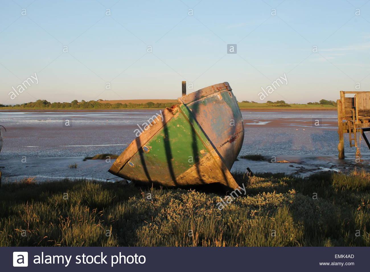 Canotto on Grassy lakeshore Immagini Stock