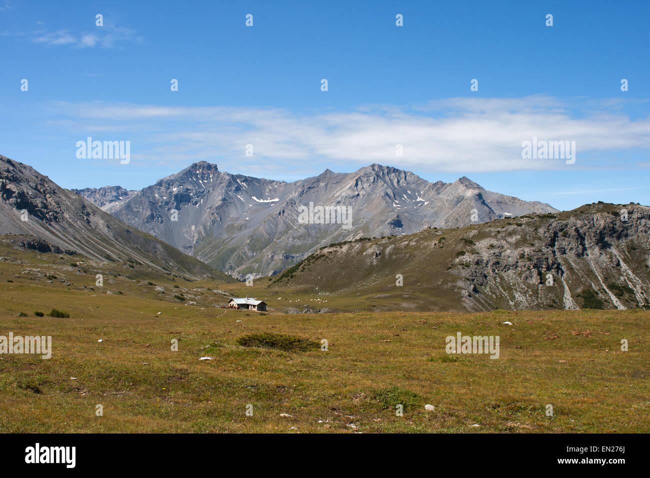 Cima Paradiso peak Svizzera Engadina Alpi con casa nel campo di erba rossa Foto Stock