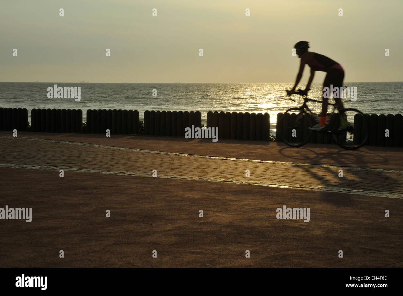 Durban, KwaZulu-Natal, Sud Africa, silhouette, singolo adulto maschio, ciclista Bicicletta Equitazione sulla spiaggia, Immagini Stock