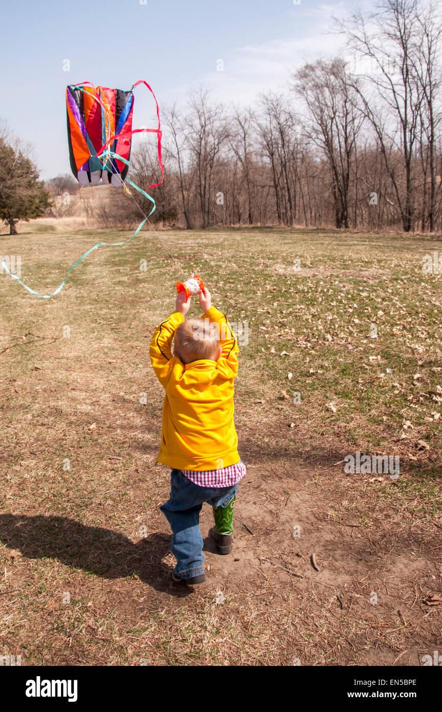 Cervo volante di volo di ragazzo Immagini Stock