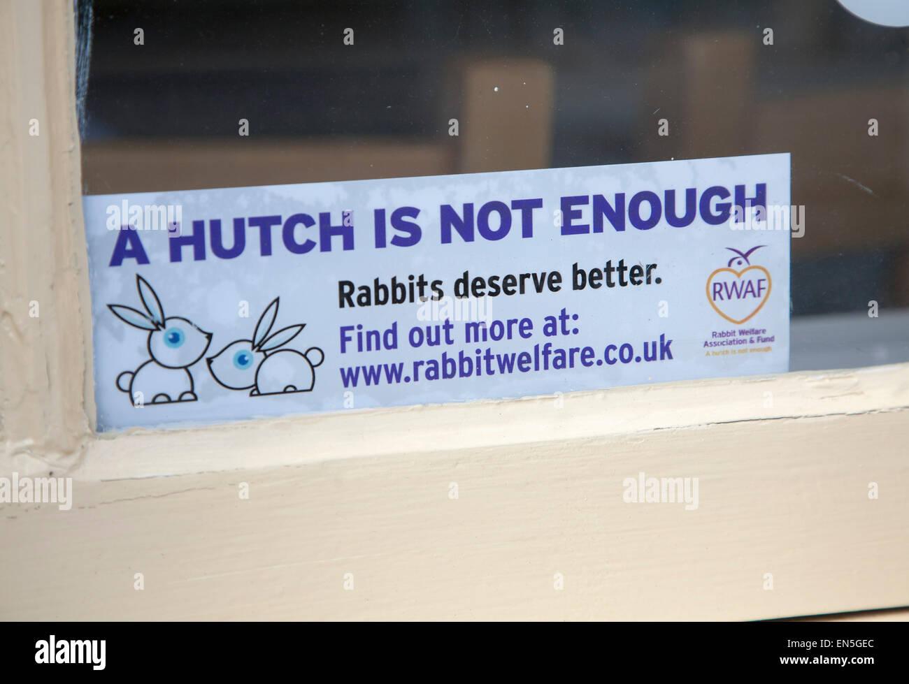 """Finestra di accesso a dire 'un hutch non è sufficiente - Conigli meritano di meglio"""", coniglio benessere, Immagini Stock"""